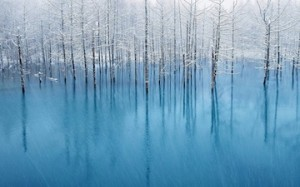 世界のアップルに選ばれた写真家のモノガタリ